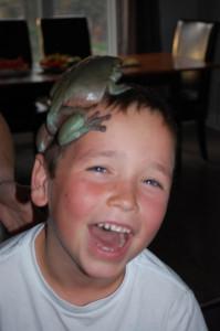 Critter on head