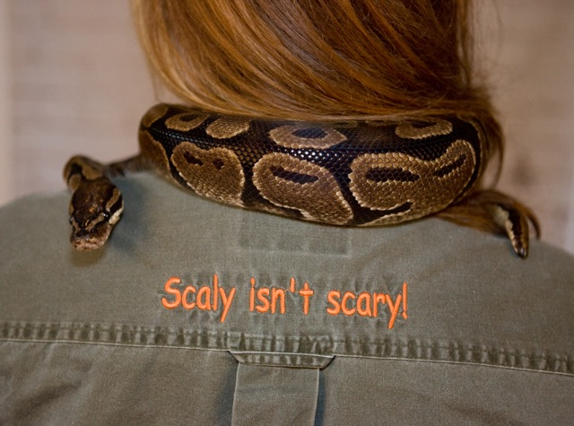 snake on shoulders
